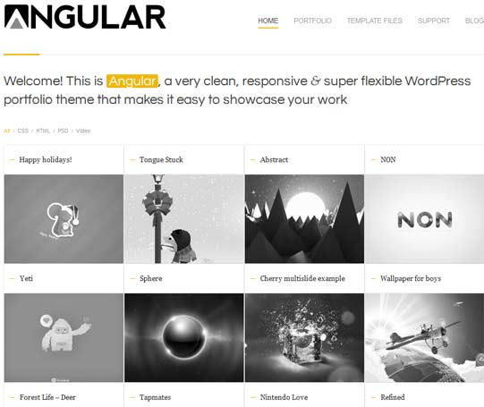 Angular WP theme