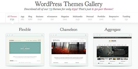Choosing WordPress theme