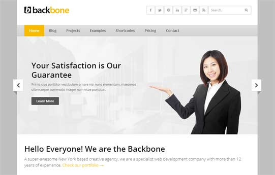 Clean business theme