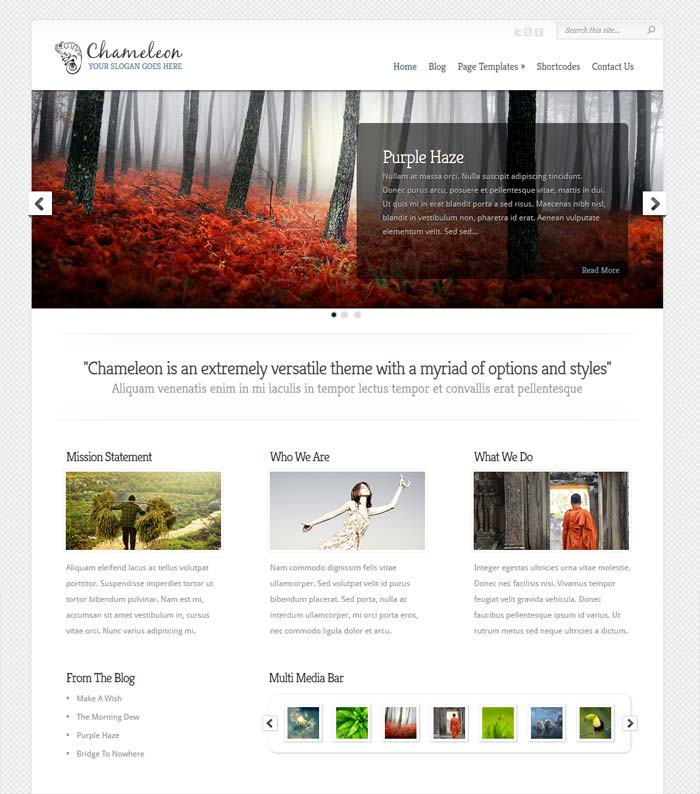 Flexible theme - Elegant themes