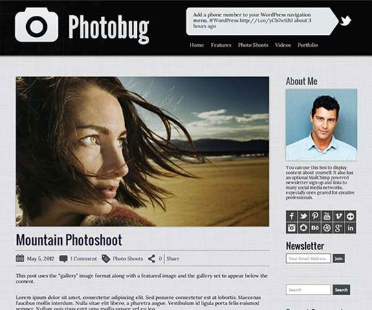 Organized Theme - Photobug