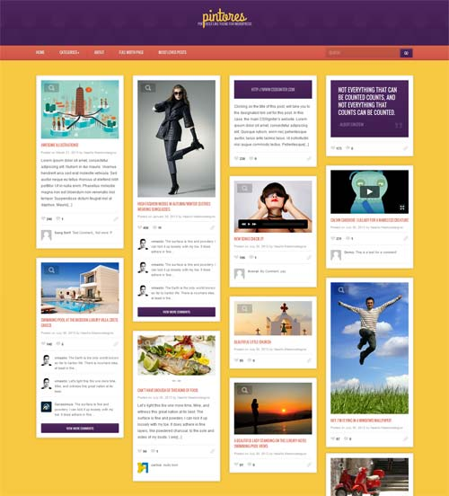 Pinterest WP Themes