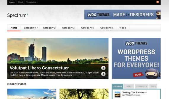 WooThemes magazine theme