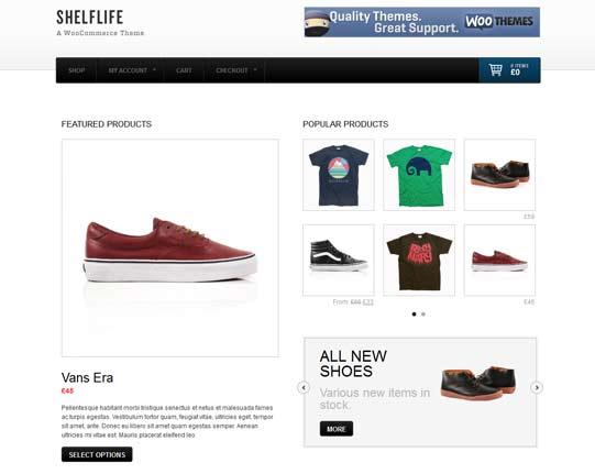 Wordpress E-commerce theme