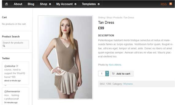 WordPress theme E-commerce