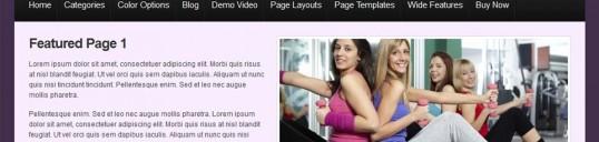 Premium WordPress theme - Elegance